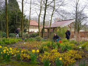 Pflanzungen am Rosengarten